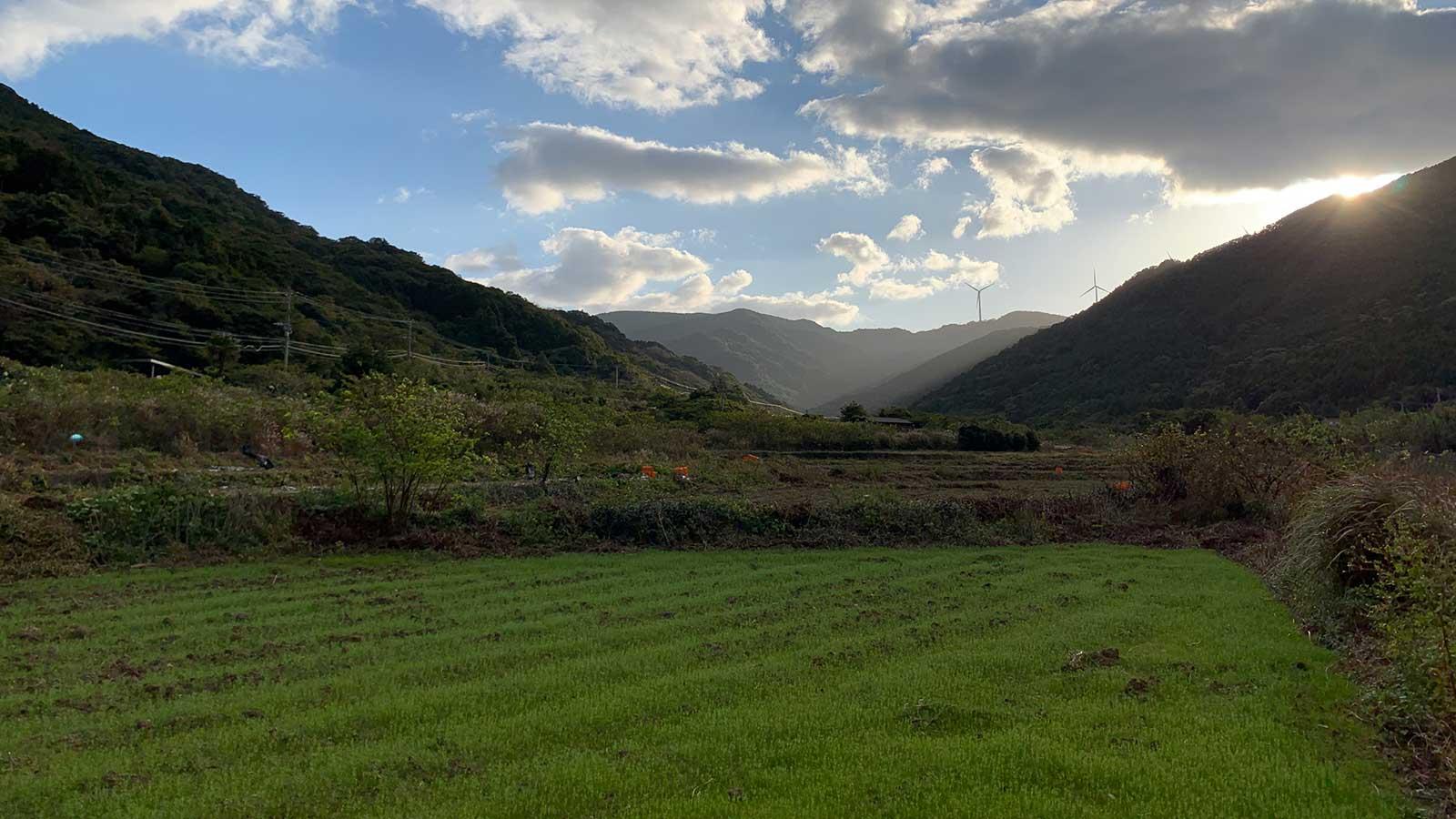 休耕地を蘇らせ幻の品種を復活させるなど、五島灘酒造は上五島の農業振興にも取り組んでいる。
